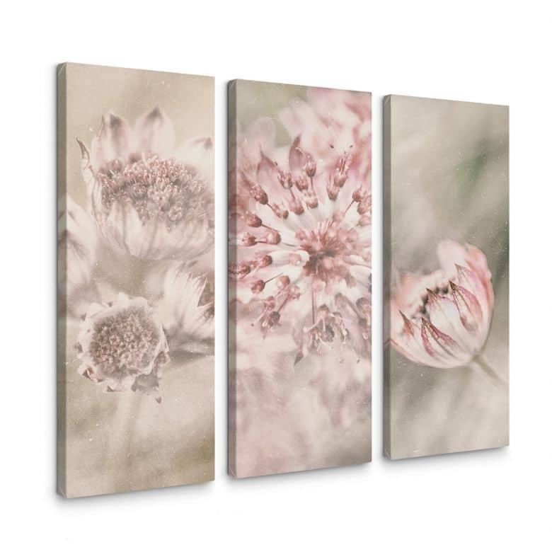 Leinwandbild Davidsson - Wiesenblüte - 3x 30x80 cm