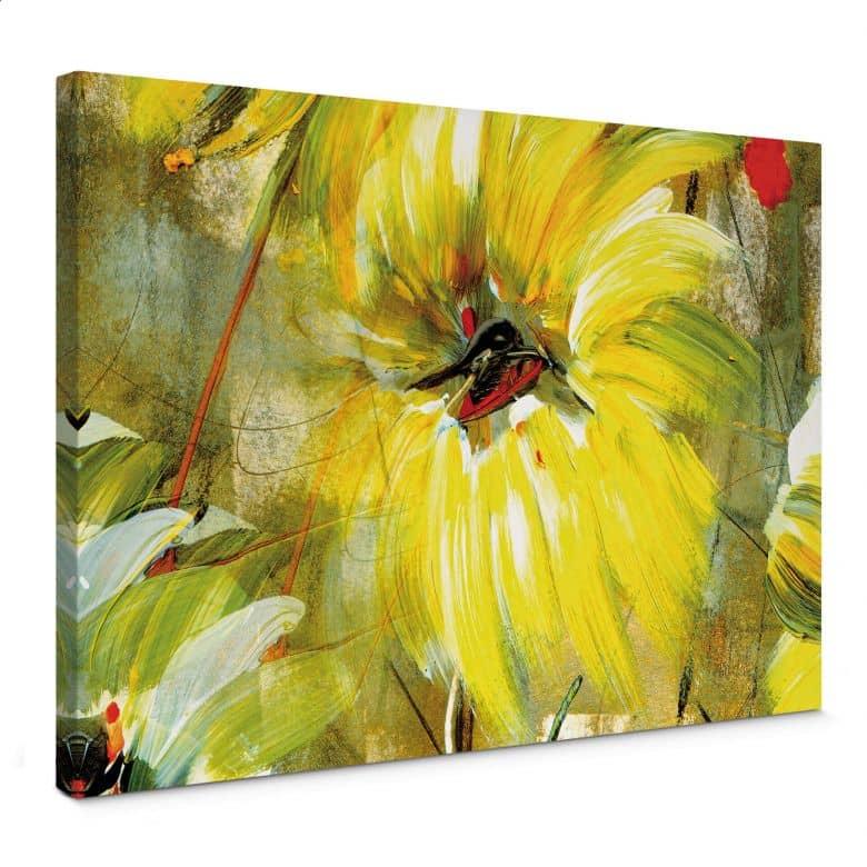 Leinwandbild Niksic - Der Raum voller Sonne und Freude