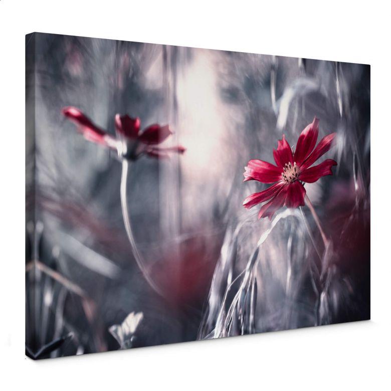 Leinwandbild Bravin - Blütenrausch