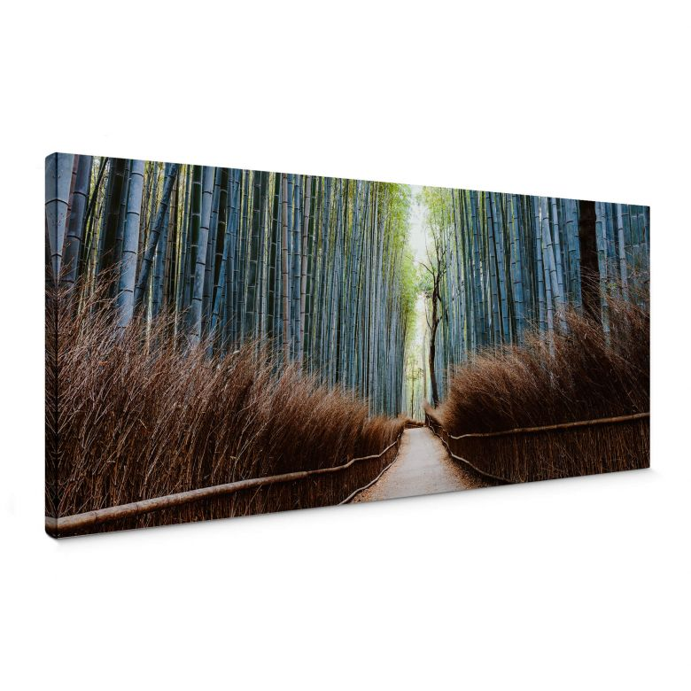 Canvas Print Colombo - The Bamboo Cave in Japan - Panorama