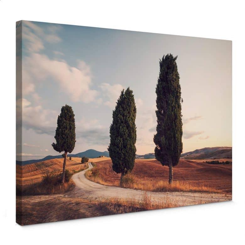 Leinwandbild Colombo - Drei Zypressen am Weg