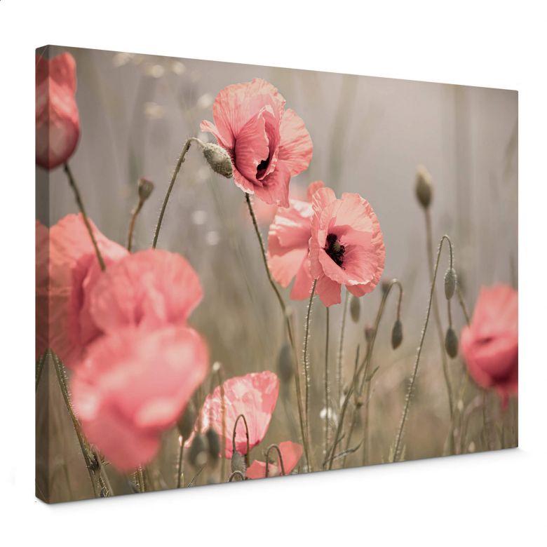 Tableau sur toile Delgado - Fleur de coquelicot romantique