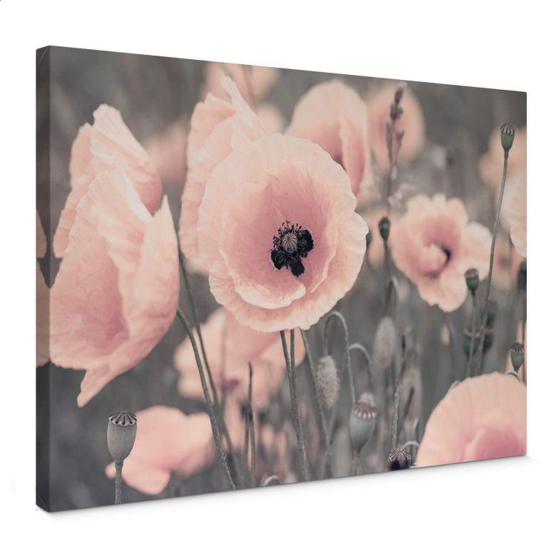 Tableau en toile Delgado - Coquelicot rose