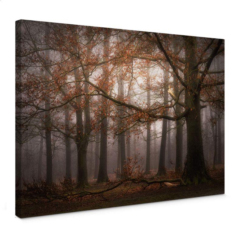 Stampa su tela Dingemans - Nebbia nella foresta autunnale