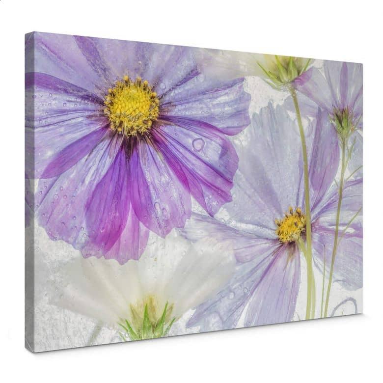 Leinwandbild Disher - Frozen Flowers
