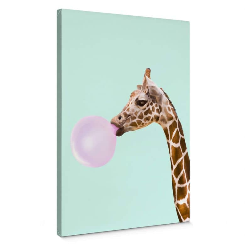 Canvas Print Fuentes - Giraffe with Chewing Gum