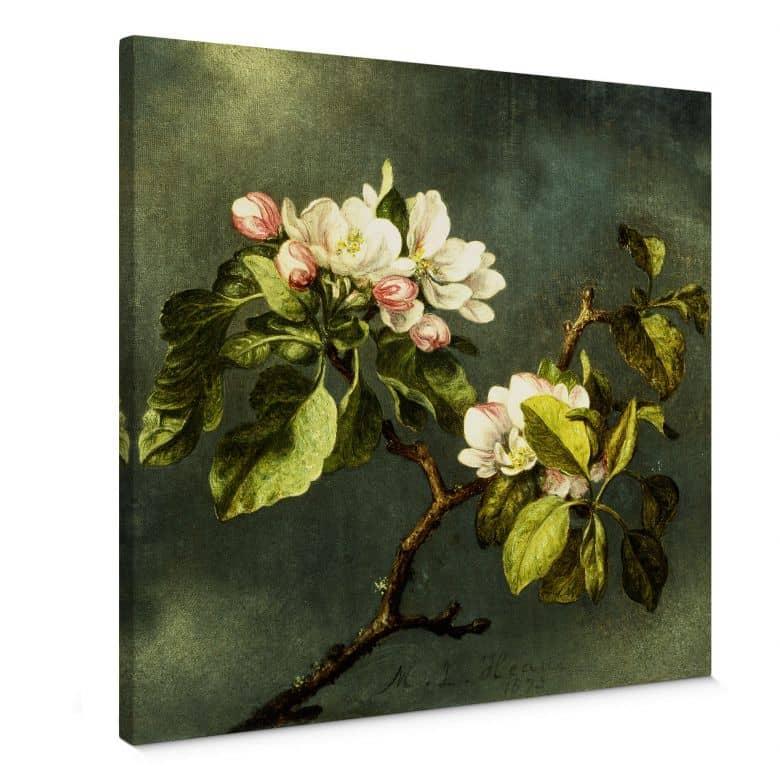 Leinwandbild Heade - Apfelblüten