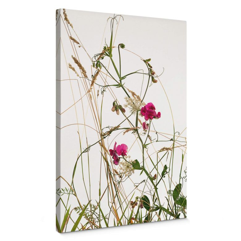 Canvas Print Kadam - Fragrant