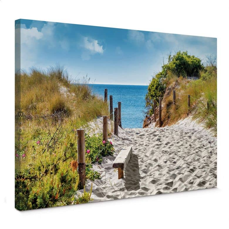 Coast view Canvas print