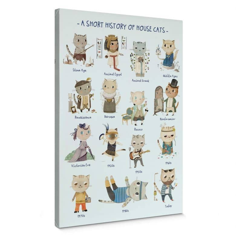 Leinwandbild Loske - History of house cats