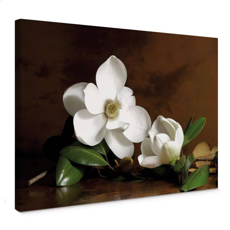 Magnolia Branch with Leaves Canvas print