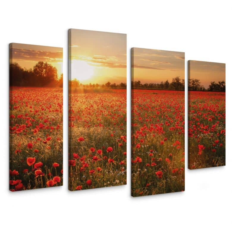 Poppy Field in Sunset (4 parts) Canvas print