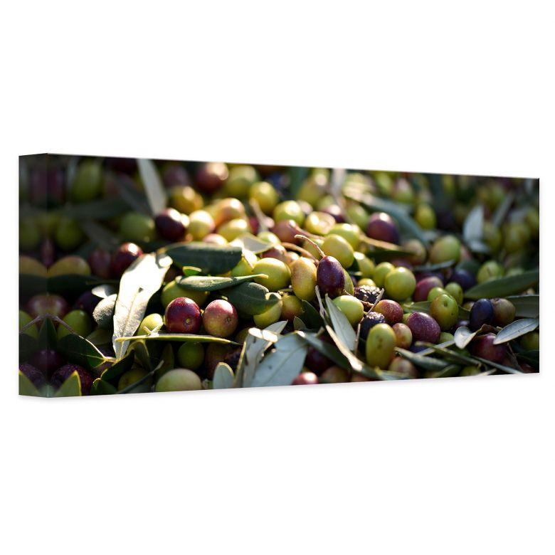 Leinwandbild mediterrane oliven panorama wall - Mediterrane wandbilder ...