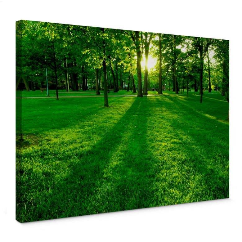 Leinwandbild Park im Grünen