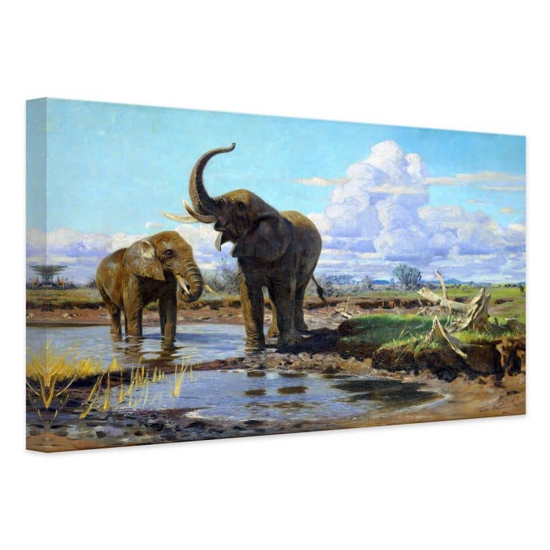 Leinwandbild Kuhnert - Elefanten an der Wasserstelle