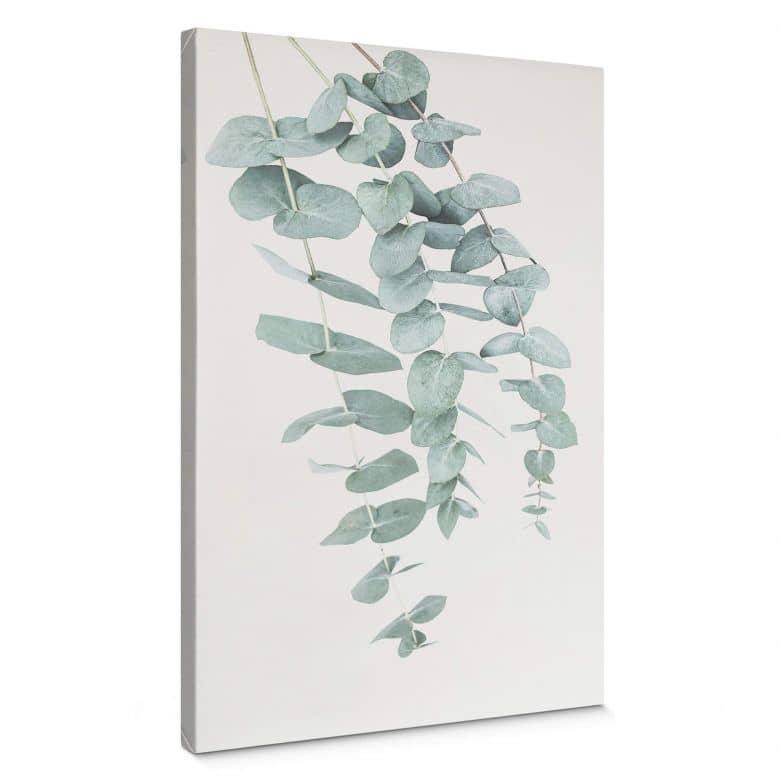 Canvas Sisi & Seb - Eucalyptus