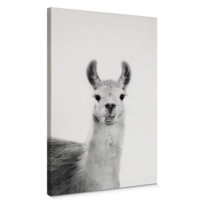 Leinwandbild Sisi & Seb - Happy Lama
