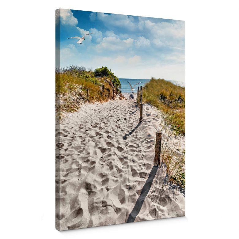 Il cammino per la spiaggia