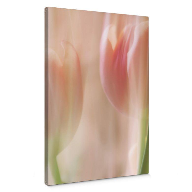 Tableau sur toile Westum - Shy tulips