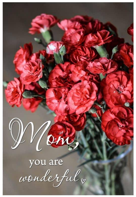 Cadeaubon Moederdag - Red Carnations