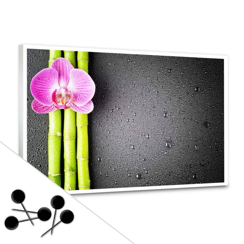 Orchid and Bamboo Bulletin Board