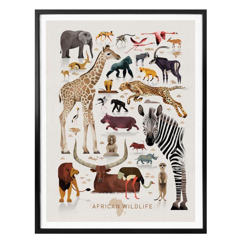 Poster Braun - Afrika