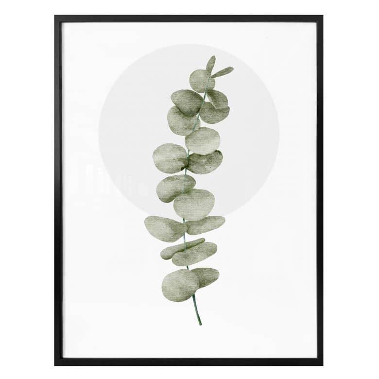 Poster Kubistika - Eukalyptus