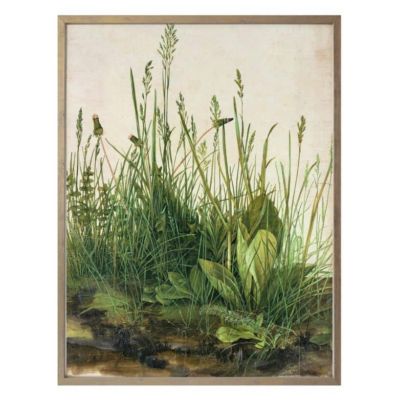 Poster Dürer - Das große Rasenstück