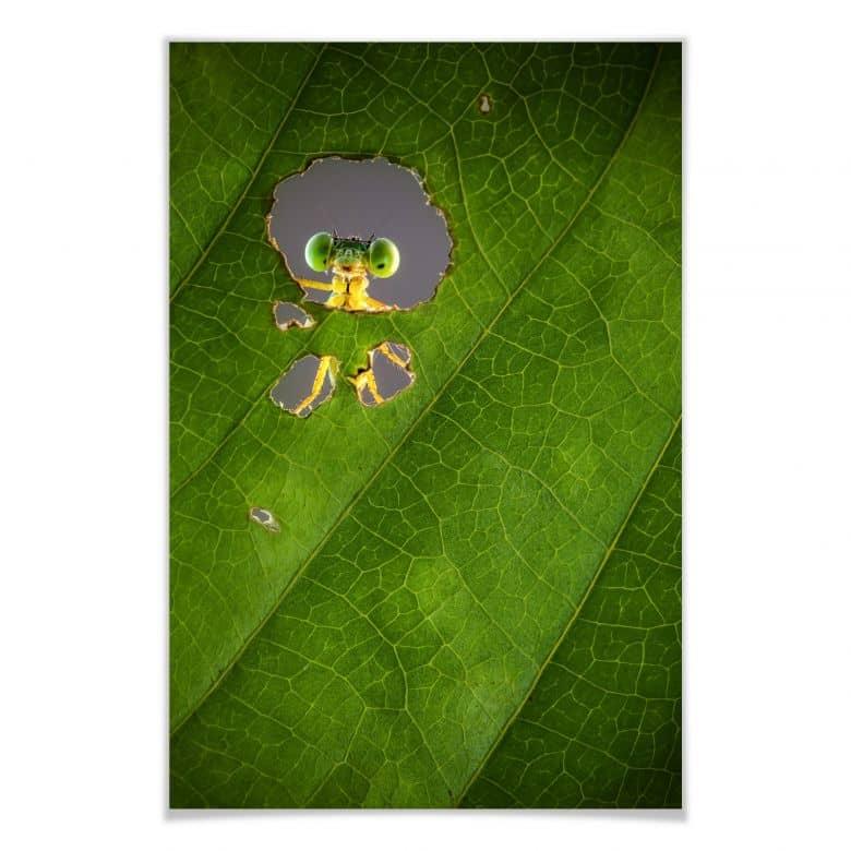 Poster Wilianto - Hello little Friend