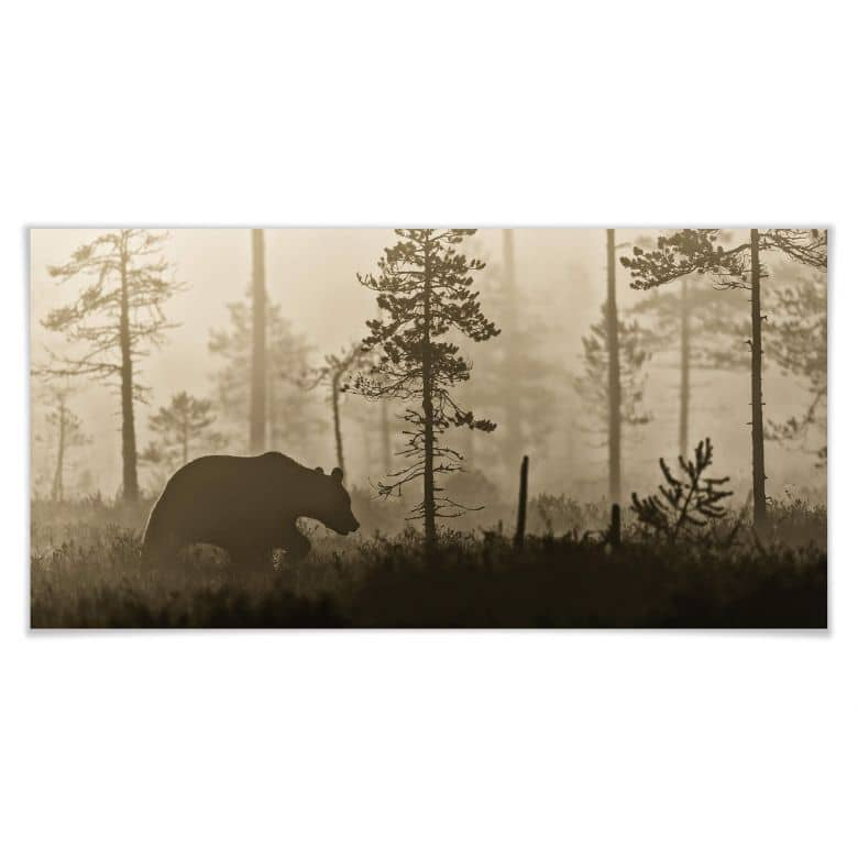 Poster Ove Linde - Nebel am Morgen - Panorama