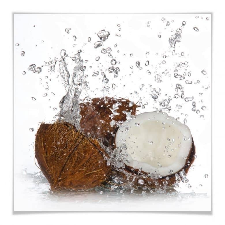 Poster Caribbean Coconut - quadratisch