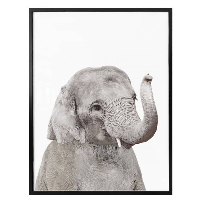 Poster Sisi & Seb - Baby Elephant