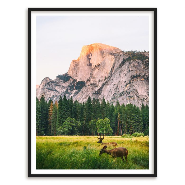Poster Deers in the Mountains | wall-art.de
