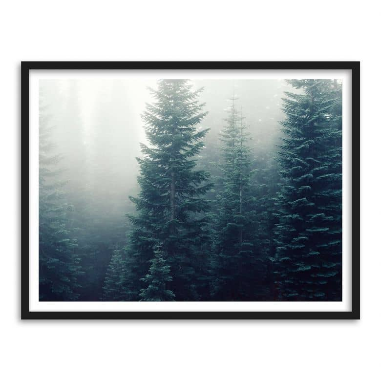 Gerahmtes Poster Nebel im Wald | wall-art.de