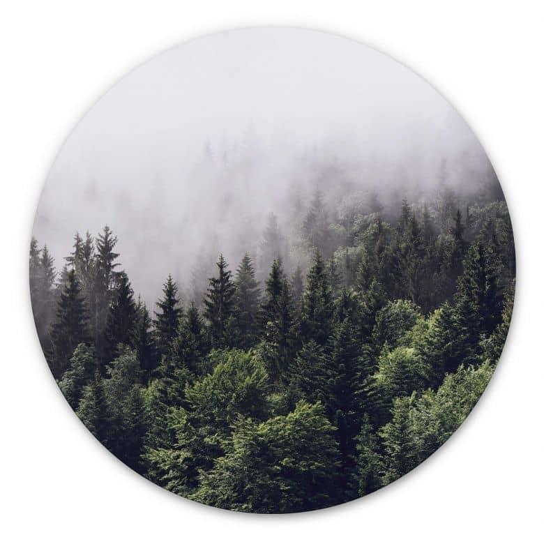 Wandcirkel Foggy Forest