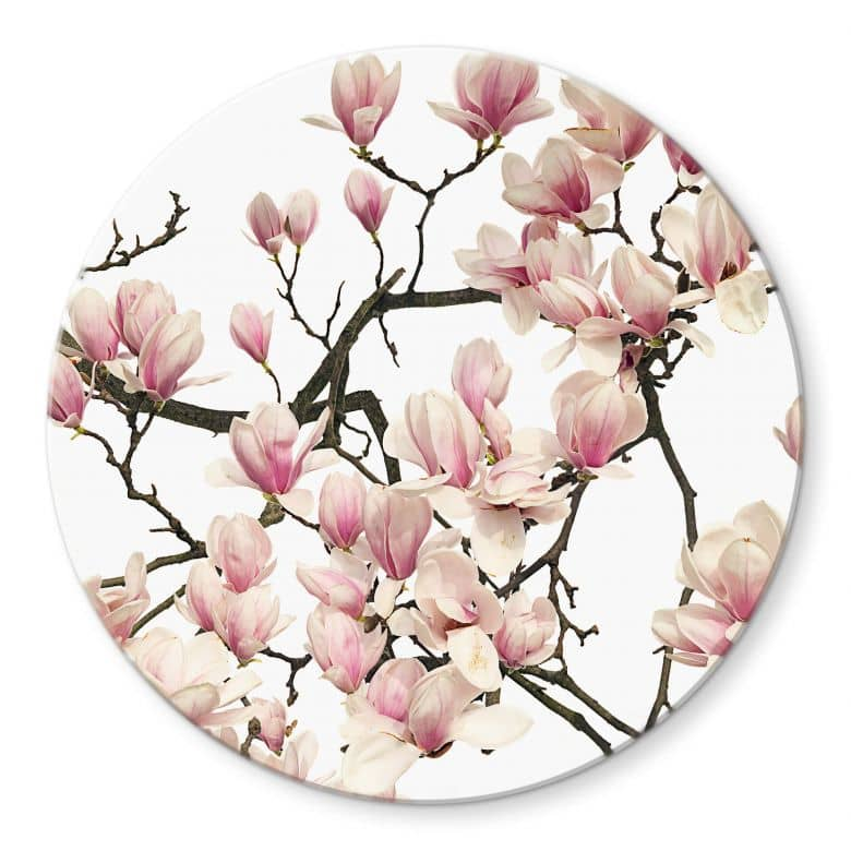 Glasbild Kadam - Flora Magnolia - Rund