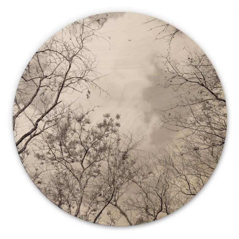 Holzbild Baumkronen im Himmel - Rund
