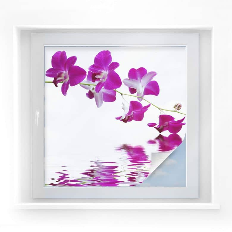 Sichtschutzfolie Blütenzweig - quadratisch