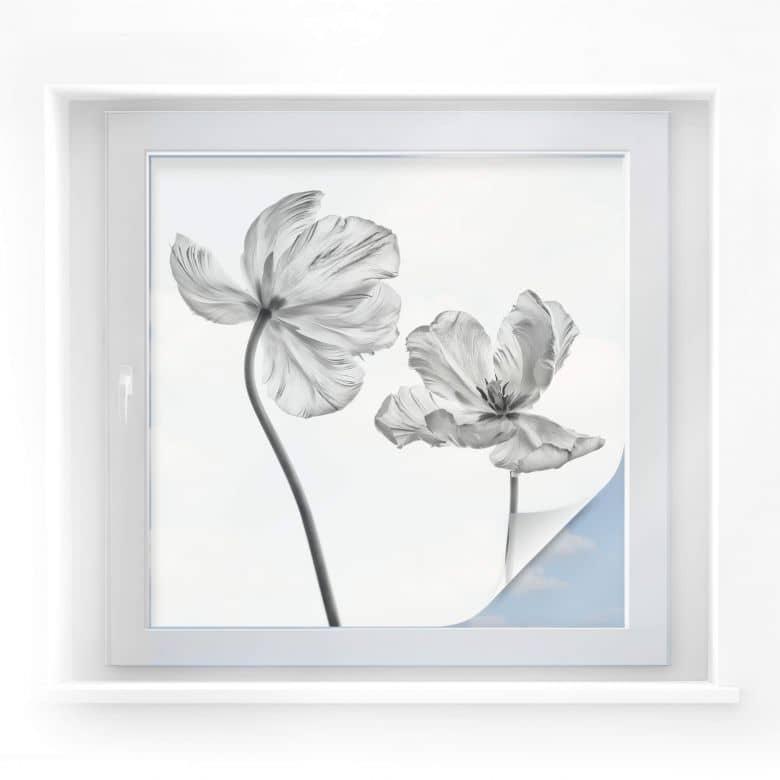 Sichtschutzfolie Grønkjær - Tulpenblüte