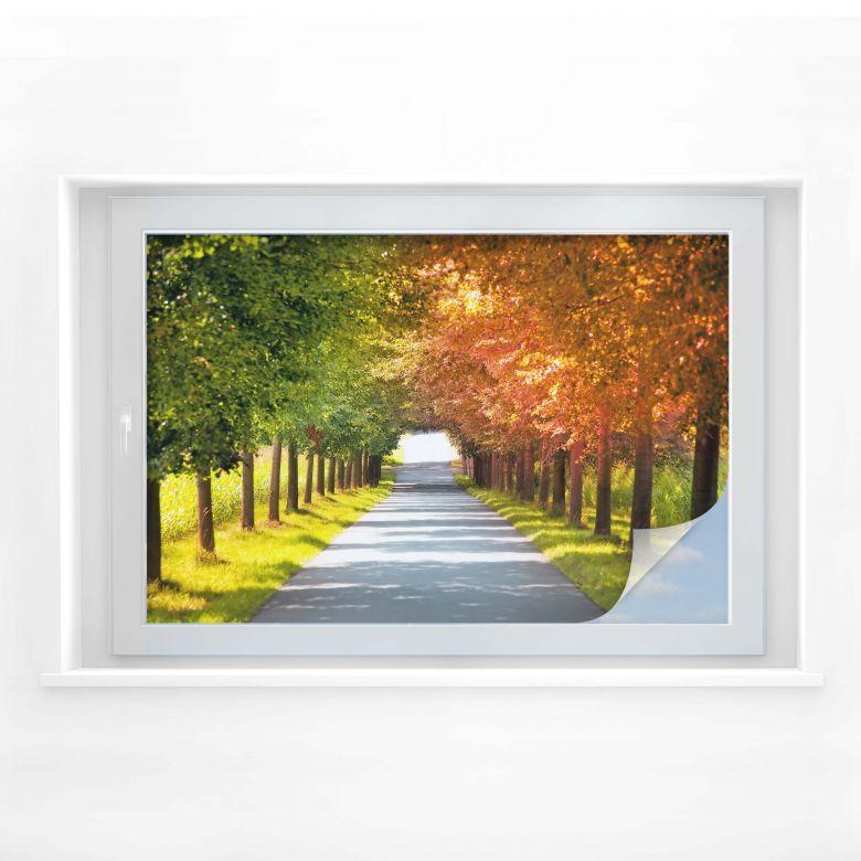 Sichtschutzfolie Herbst