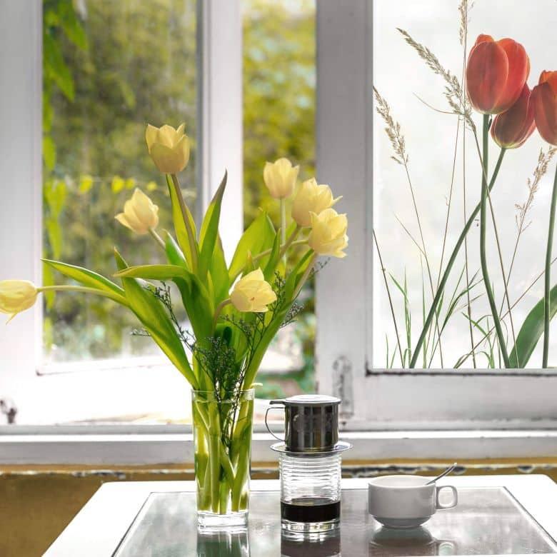 Sichtschutzfolie Kadam – Flora Tulpe