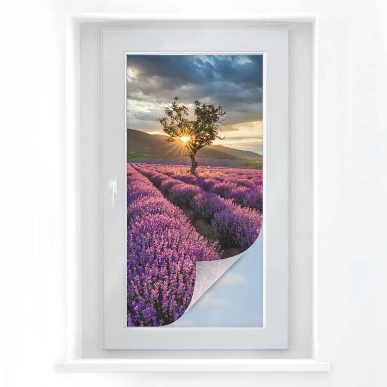 Raamfolie Lavendel in de Provence