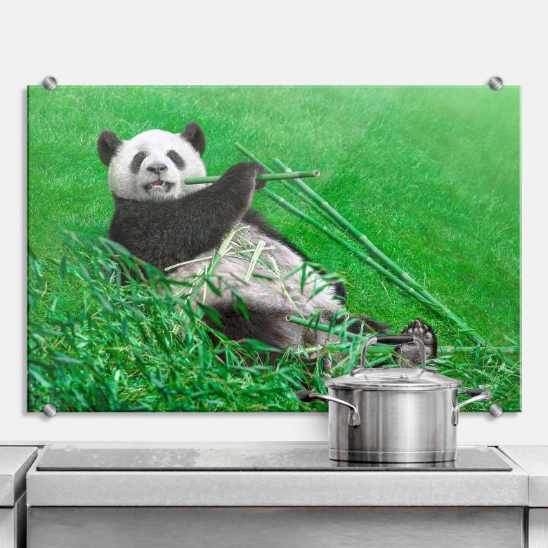 Spritzschutz Ben Heine - Glücklicher Panda
