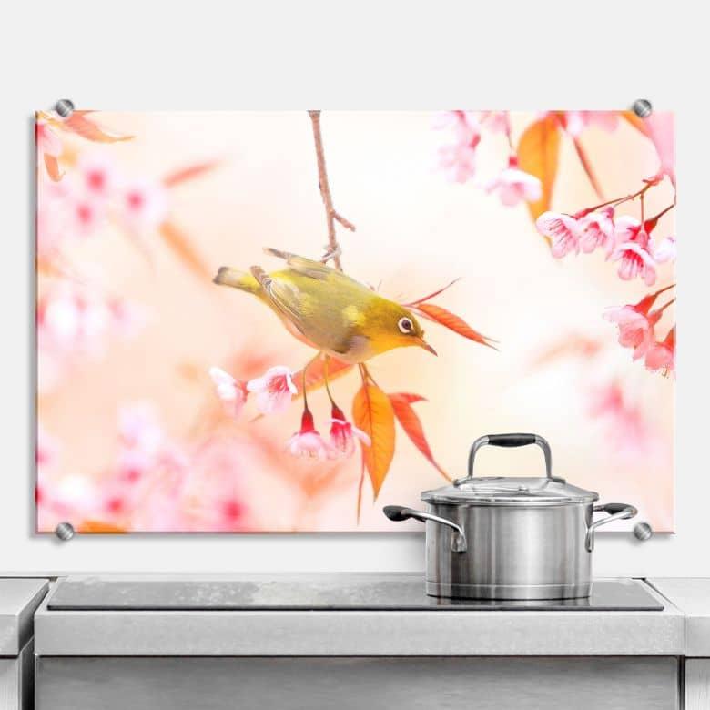 Küchenrückwand Vogelgezwitscher in der Kirschblüte