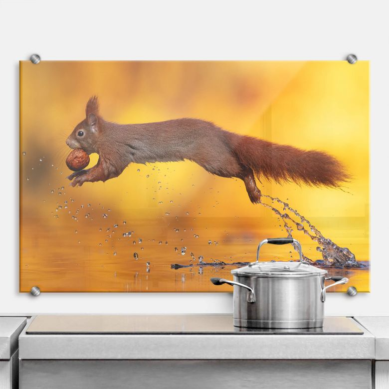 Spritzschutz van Duijn - Eichhörnchen im Sprung