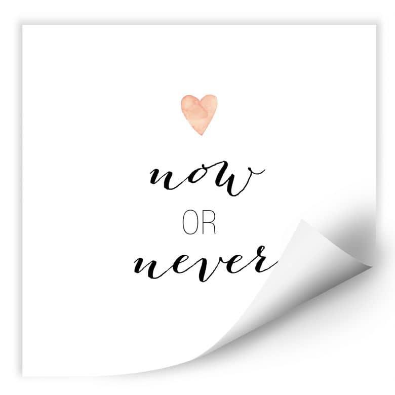 Wallprint Confetti & Cream - Now or Never