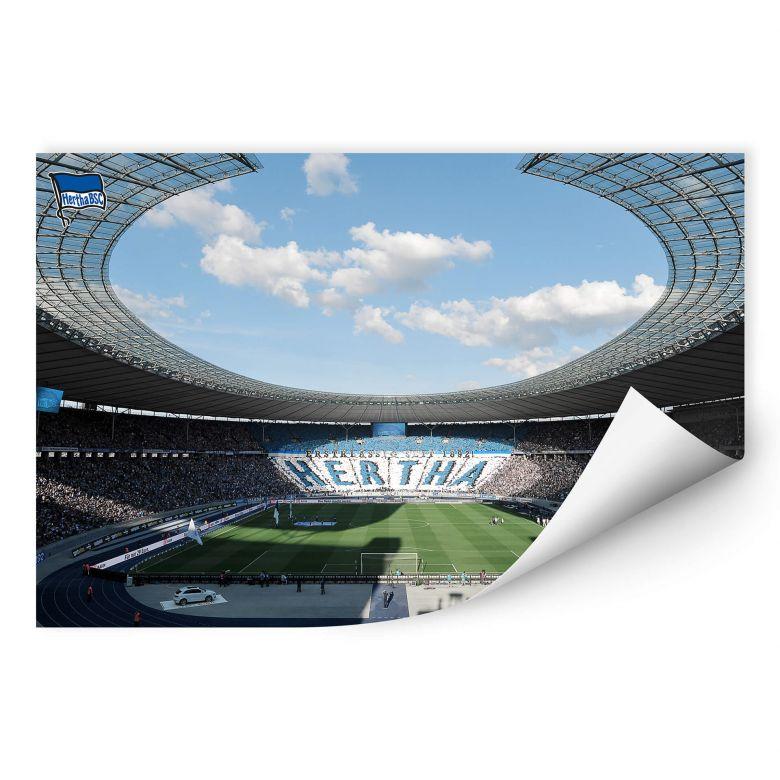 Wallprint Hertha BSC - Stadion am Tag