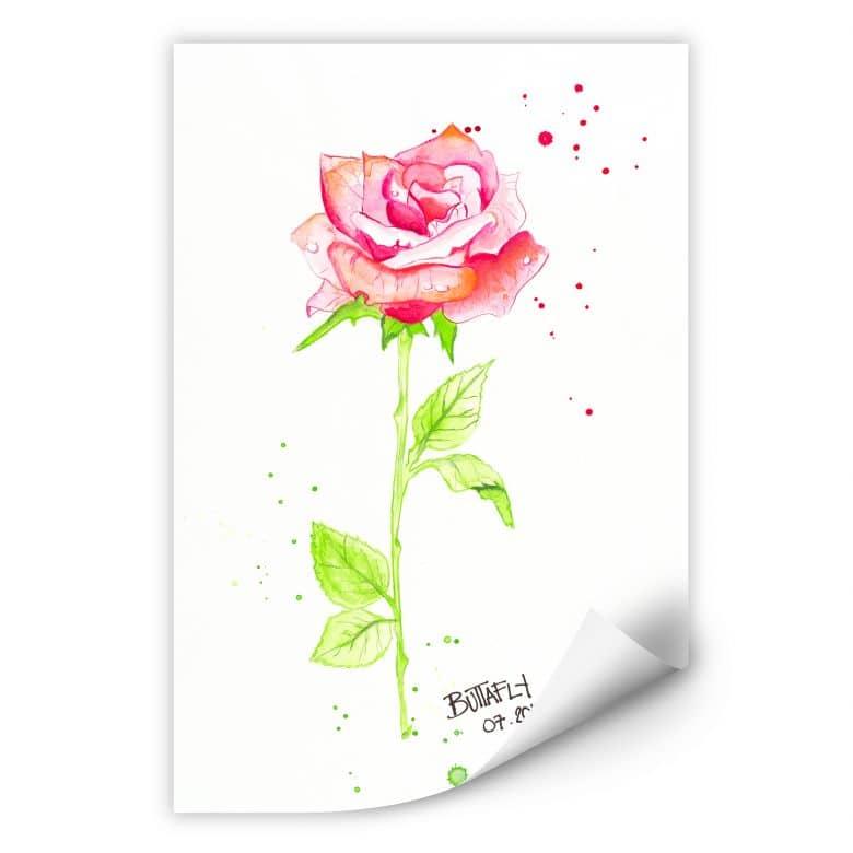 Wallprint Buttafly - Rose