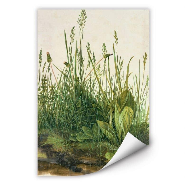 Wallprint Dürer - Das große Rasenstück