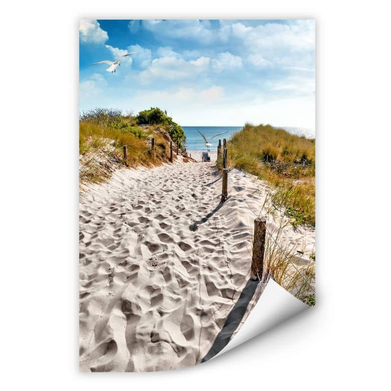Wallprint W - Way to the Beach